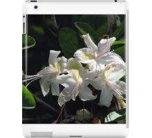 Western Azalea iPad Case/Skin