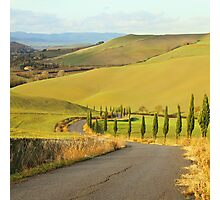 Tuscan Road Photographic Print