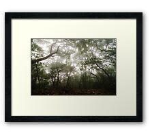 Mist - Fei Ngo Shan, Hong Kong Framed Print
