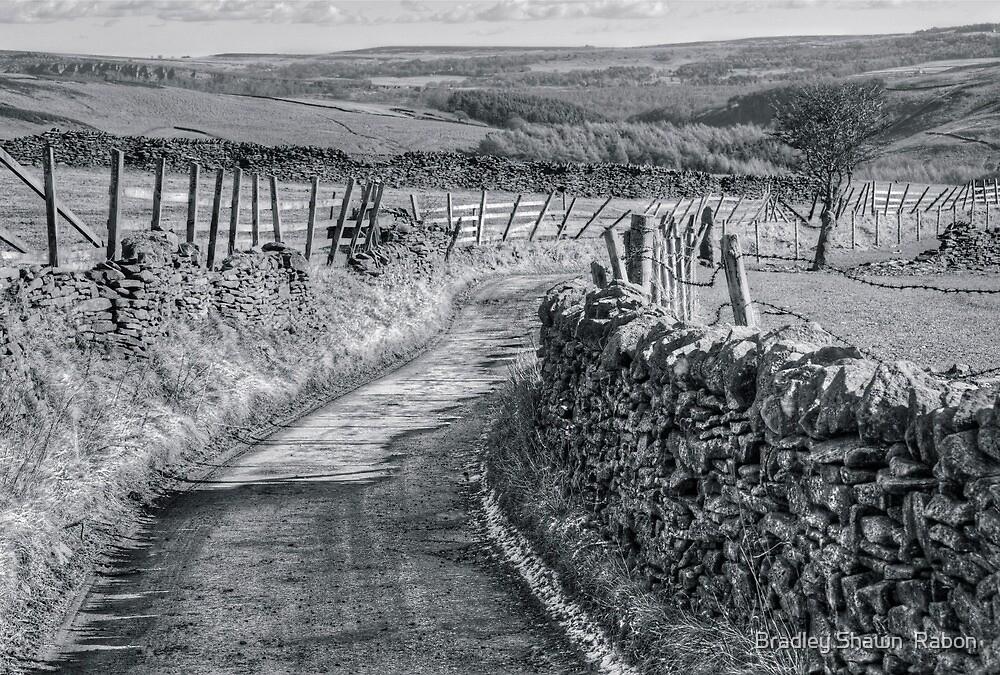 """""""Down The Narrow Lane"""" by Bradley Shawn  Rabon"""
