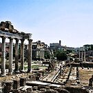 """A View from the Forum by Christine """"Xine"""" Segalas"""