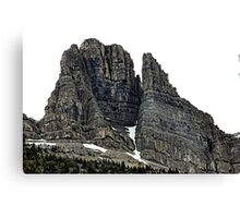 Gorgeous Sentinels Canvas Print