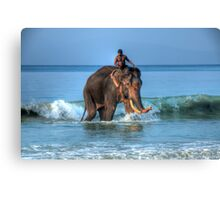 Meet Rajan Canvas Print