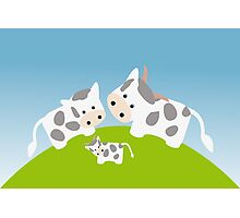 Cute happy cow family in meadow Photographic Print