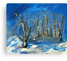 Winter in South Africa Canvas Print
