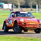 Tuthill Porsche Safari 911 by Willie Jackson