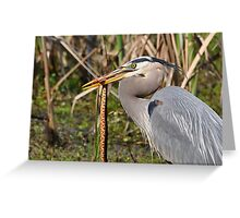Great Heron With Dinner Closeup Greeting Card