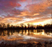 Crane Hollow Sunrise Boulder County Colorado by Bo Insogna