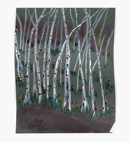 spring birches Poster