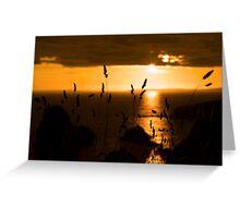 wild atlantic way sunset  Greeting Card