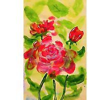Majestic roses, watercolor Photographic Print