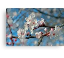 Botanical Blossoms Canvas Print