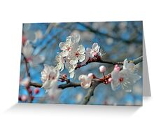 Botanical Blossoms Greeting Card