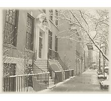 Summer's Dormant Dream - Winter - Upper East Side - NYC Photographic Print
