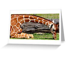Giraffe's sit down lunch Greeting Card