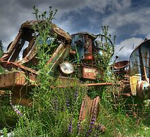 WRECK IN THE WEEDS......! by Roy  Massicks