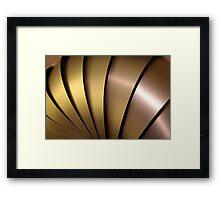 Shiny Armadillo. Framed Print