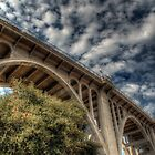 Suicide Bridge by Rob  Stanard
