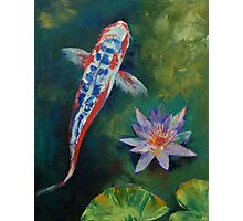 Shusui Koi and Water Lily Photographic Print