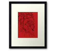 Feathered Nautilus Framed Print