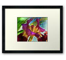 Watercolor Iris Framed Print