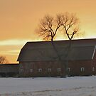 Golden Country Sunset by lorilee