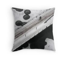 Ice scape Throw Pillow