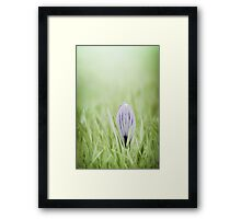 Waking up in silence Framed Print