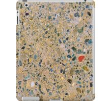 Speckled Marbkle iPad Case/Skin