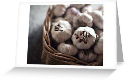 garlic by Kim Jackman