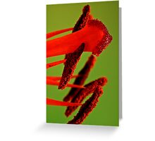 Lily Stamens Greeting Card