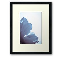 Magnolia blue (rectangle) Framed Print