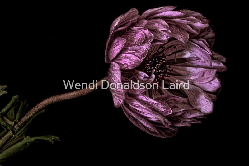Reaching Out by Wendi Donaldson