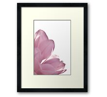 Magnolia pink (rectangle) Framed Print