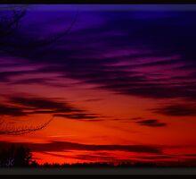 Vivid Sunset by DrewK