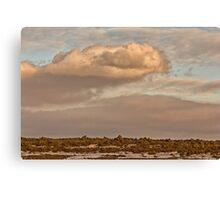 Saskatchewan Landscape Canvas Print