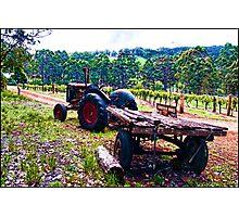 Karriview Winery Photographic Print