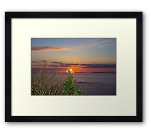 yellow sunset tall thistles Framed Print