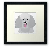 Toy Poodle Framed Print