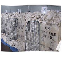 Australian Wool Sale Poster