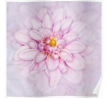 Floral Layers Poster