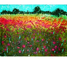 Summer Field Acrylic Painting Photographic Print