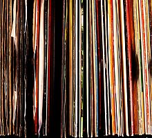 Vinyl Junkie by Deb Maidment