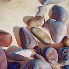 """Pallette of stones - Hallett Cove beach SA"" - detail 2 by Elena Kolotusha"