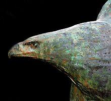Eagle Or Turkey ? by artisandelimage