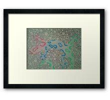 rainbow lizard Framed Print