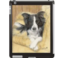 Border Collie Dog Couch Pet Animal Art Cathy Peek iPad Case/Skin