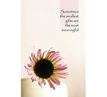 Smallest Gifts - Card Photographic Print
