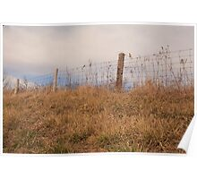fence in mid morning Poster