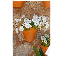 Wall with flowers Poster